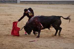 Madrid Bullfighting schedule 2014