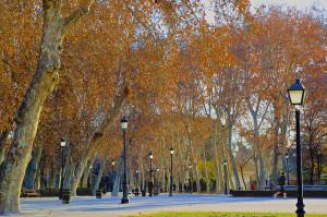 The Parque del Buen Retiro is the most popular park in Madrid