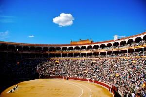 Madrid Bullfighting