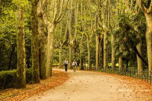 Best Parks in Madrid