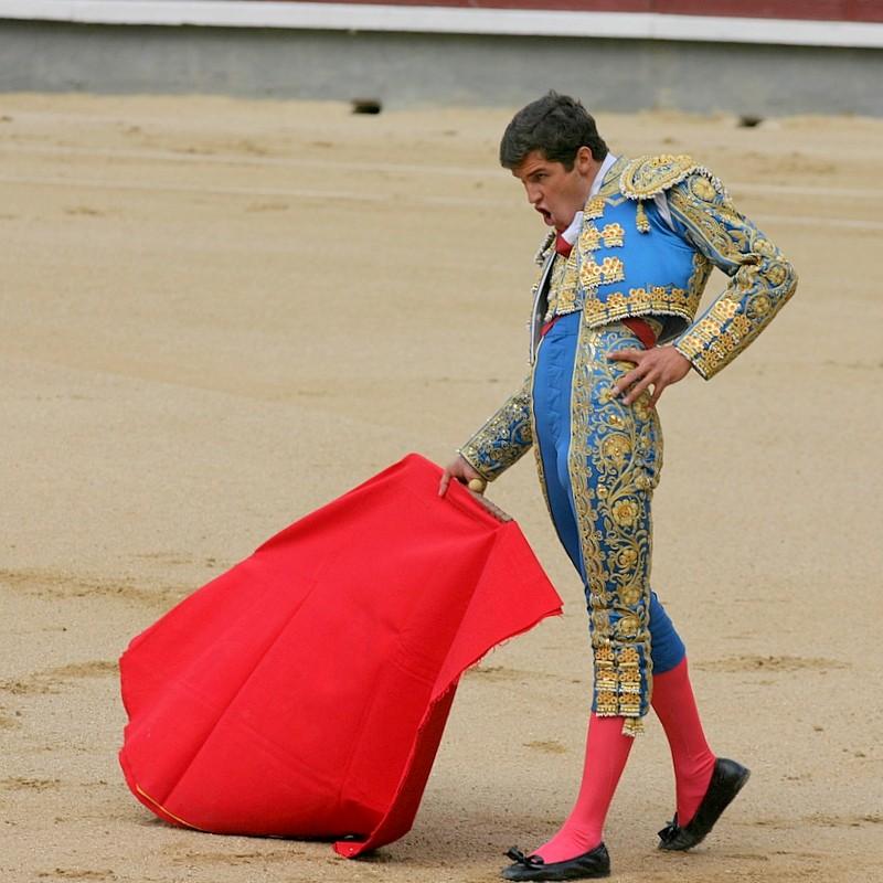 novillada bullfighting spain madrid las ventas toros bull
